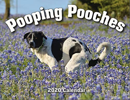 pooping pooches calendar funny gift